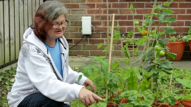 Bolton Urban Growers